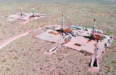 Ofrecen seis áreas de gas y petróleo de Vaca Muerta