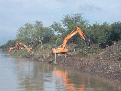 Vecinos pegan el grito por tala de árboles en reserva de Punta Lara