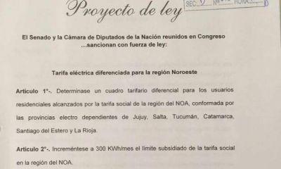 Beder y Madera en el Congreso por la tarifa eléctrica diferenciada