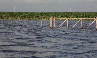"""Chacareros inundados apuntan contra los """"paliativos menores"""" del Gobierno"""