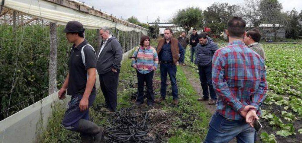 Extenderán la línea de créditos blandos a productores frutihortícolas