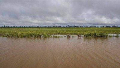 Pequeños productores fueron los más afectados por las lluvias