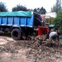 Con el uso de una chipeadora, el Municipio intentará solucionar la acumulación de ramas en la calle