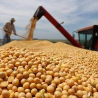 Retenciones a la soja: Salta aportó más de 10.000 millones y recibió solo el 3%