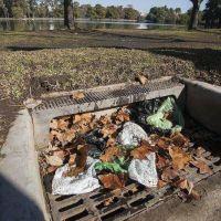 Refuerzan limpieza de sumideros por las hojas del otoño
