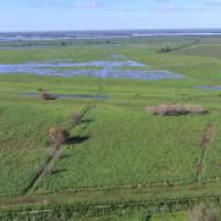 Terraplenes en zona de isla: Asamblea en Las Canaletas para proteger los humedales