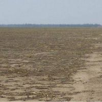 Urtubey invita a invertir en tierras aún vedadas a la producción