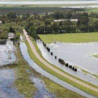 """""""Si el agua va para Pehuajó, habrá que hacer obras en ese distrito"""", dijo el intendente de General Villegas"""
