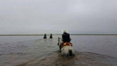 Crítica situación hídrica para productores de la Cuña Boscosa