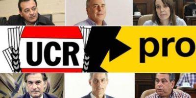 Se complica la unidad en Cambiemos: en La Plata también habrá al menos una