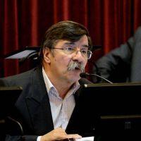 """Alfredo Martínez pidió """"andar con baldes de agua y no de nafta"""""""
