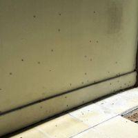 Invasión de mosquitos en Luján