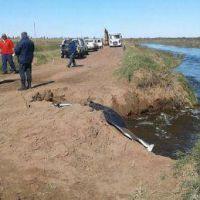 """General Villegas: """"se puede observar una mejoría en el escurrimiento de las aguas"""""""