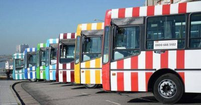 """El Municipio calificó el servicio de colectivo: """"Estamos 5 puntos"""""""