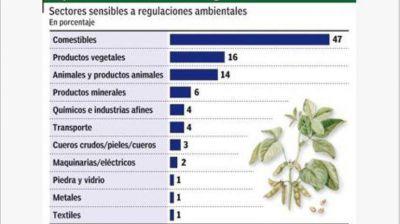 Por normas ambientales, Europa quiere frenar exportaciones argentinas