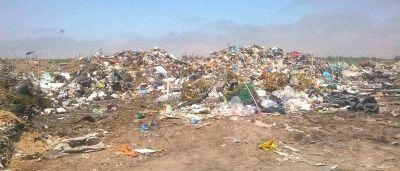 Recuperadores sólo reciclan un 20% de la basura