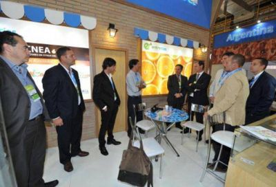 Brasil confirmó la apertura de su mercado al citrus