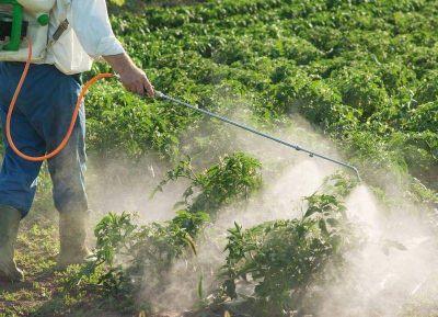 Preocupación de ingenieros agrónomos por exceso en el uso de agroquímicos