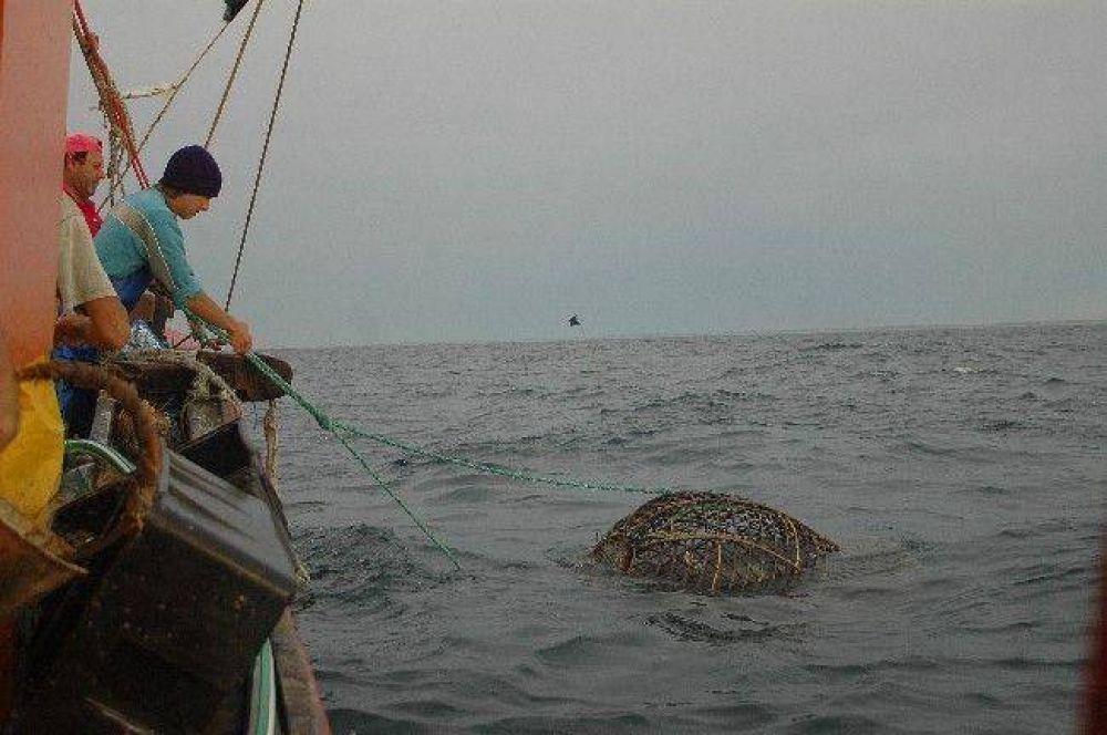 Evalúan un proyecto para frenar la depredación de especies marinas