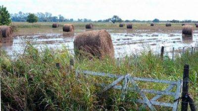Diputados reclaman la ampliación de la emergencia hídrica por las inundaciones