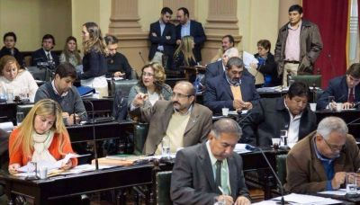 Diputados aprobó la ley para garantizar el boleto gratuito