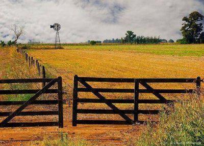Mercado inmobiliario rural: el blanqueo no trajo inversiones