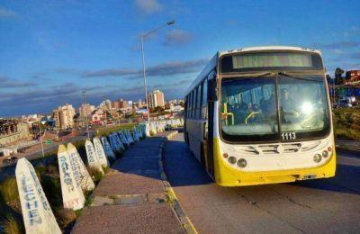 Metrobus en Neuquén : Dan a conocer las propuestas