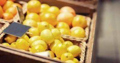 Ponderan la apertura del mercado brasilero a los limones argentinos