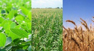Los granos se dispararon hasta 6,4% tras estimaciones de EEUU