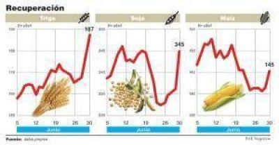 La soja se disparó 15%, volvió a valores de febrero y podría quitarle presión al dólar