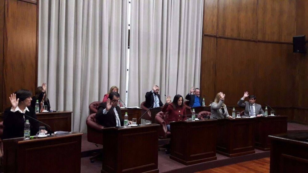 El Senado dio sanción definitiva a la Ley de Electrodependientes