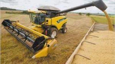 La soja cayó 3,7% y el productor vuelve a retener los granos