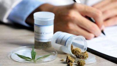 Catamarca avanza en la legalización de la marihuana con fines medicinales