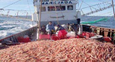 El INIDEP advierte por presión pesquera