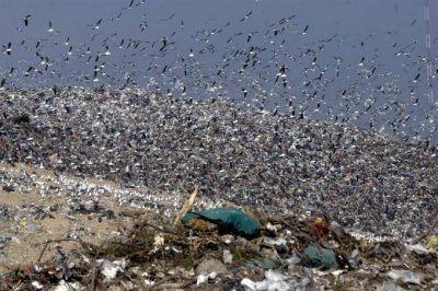 Inaugurarán una planta que procesará mil toneladas por día de basura en la región de la capital bonaerense