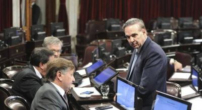 Cristina prepara el desembarco en el Senado y le mete presión a Pichetto