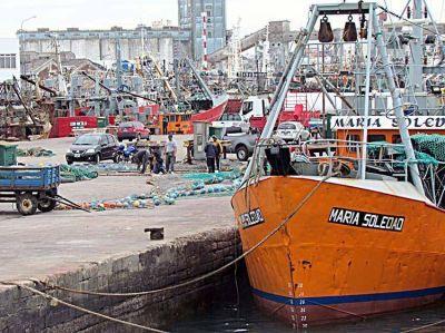 Planean mejorar los reintegros para las exportaciones de la pesca local