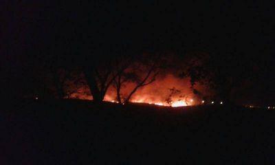 Manzur pidió a la población que denuncien la quema de cañaverales