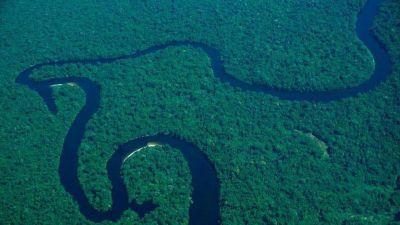 Desde Colombia, el clamor del Papa por la Amazonía