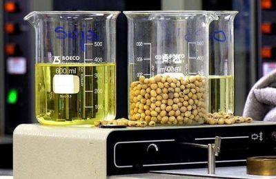 El Frepam pide protección para el biodiésel