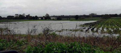Buscan declarar la emergencia hídrica en General Alvarado