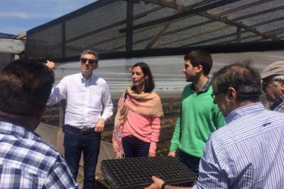 Randazzo se comprometió a resolver la informalidad y los costos en la producción hortícola