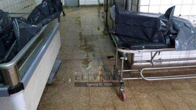 Escándalo por cuerpos con gusanos en la morgue del Hospital Perón
