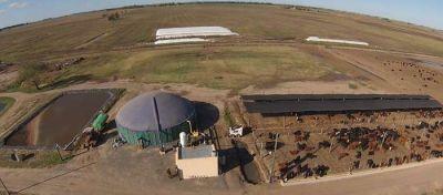 Prevén instalar una planta de biogás en Villarino