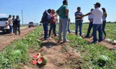 Municipio prometió auxilio a productores afectados por granizo