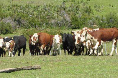 Hay malestar en el sector agropecuario porque Producción dejará de ser Ministerio