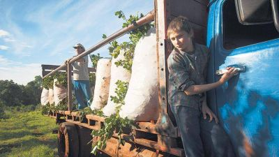 UATRE es el sindicato más denunciado por trabajo infantil en nuestro país
