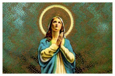 """El Episcopado pide """"unirse en la oración"""" por los tripulantes del San Juan"""