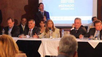 Montero participó del plenario de Comisiones en el Senado de la Nación por el Consenso Fiscal