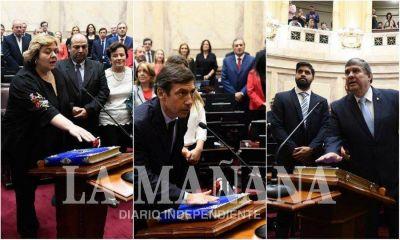Juraron los senadores por Formosa